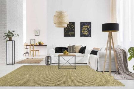 Feel Ladhak Beige Area Rug Carpet